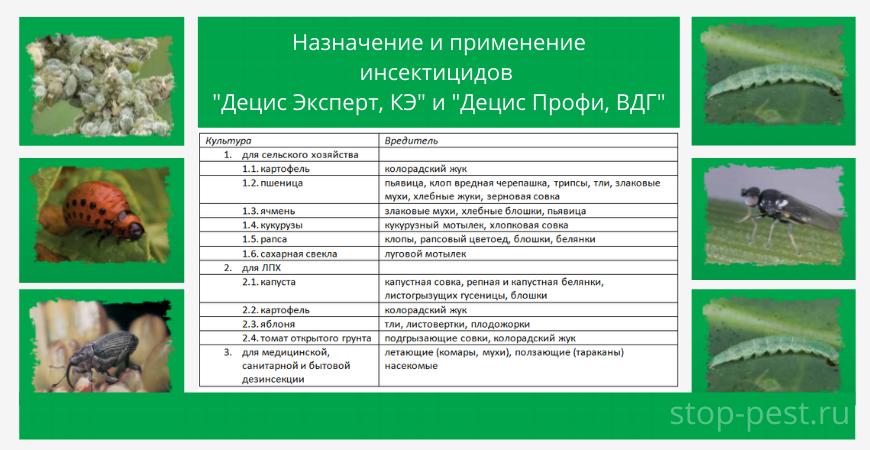 Назначение и применение «Децис Эксперт/Профи»