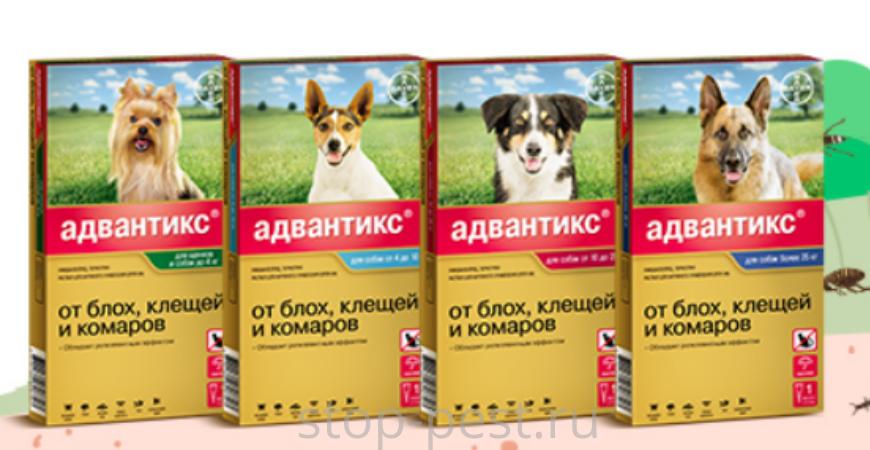 Адвантикс, капли от клещей для собак