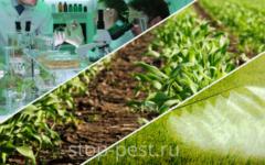 Общая классификация инсектицидов