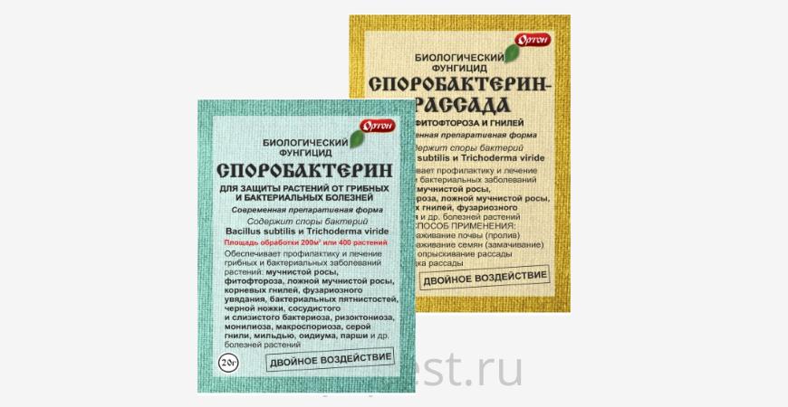 Споробактерин-инструкция по применению