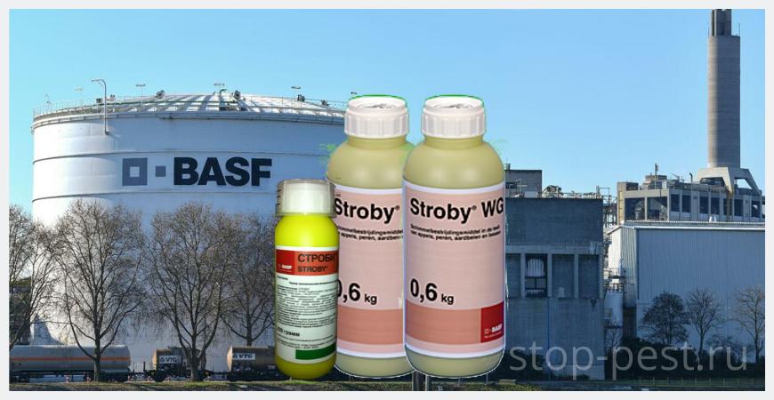 "Производитель фунгицида ""Строби, ВДГ"" - концерн BASF, Германия"