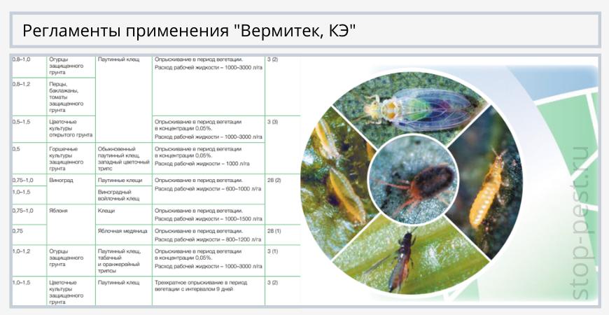"""Регламенты применения """"Вермитек, КЭ"""""""