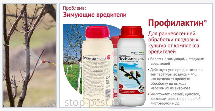 """Инсектоакарицидный препарат для первой весенней обработки """"Профилактин, МКЭ"""" (масляный концентрат эмульсии)"""