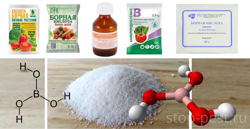 Использование борной кислоты для растениеводства и борьбы с насекомыми-вредителями