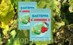 Бактерра - биологический фунгицид, инструкция по применению