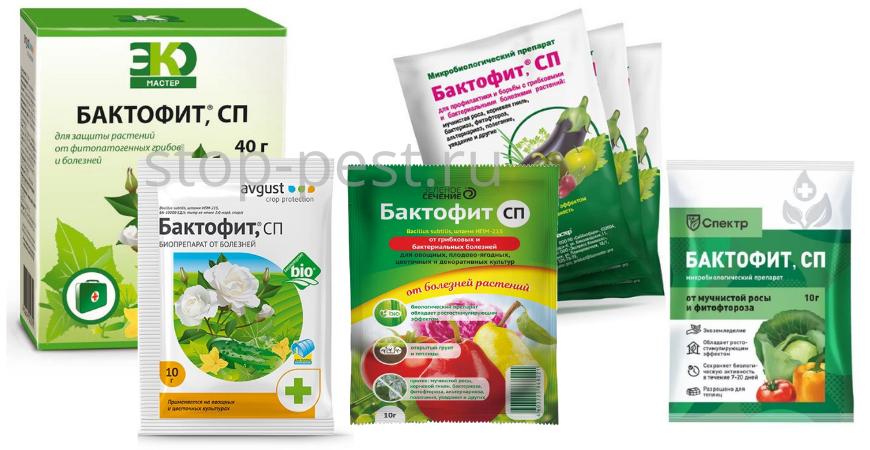 """""""Бактофит"""" - линейка препаратов для личных подсобных хозяйств"""