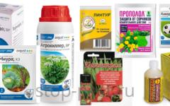 Гербициды - выбор эффективного препарата