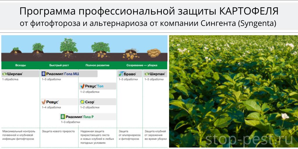 Программа защиты картофеля, Сингента (Syngenta AG)